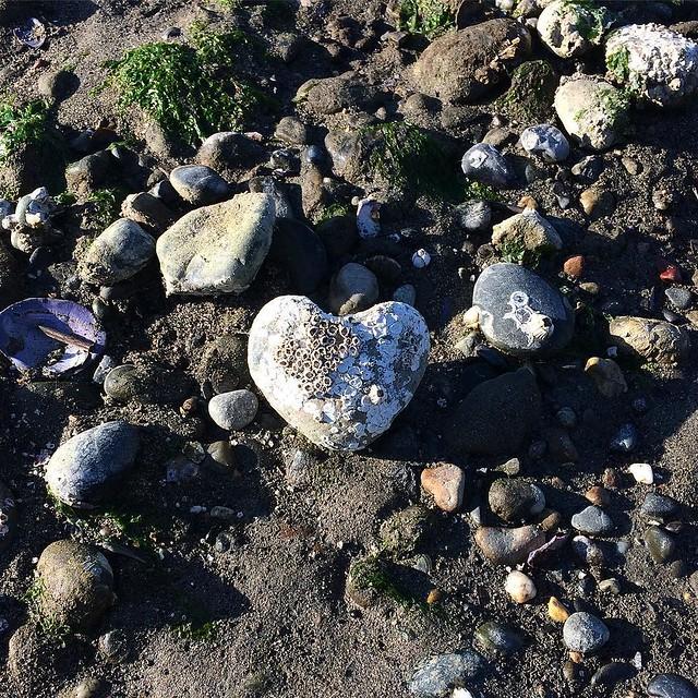 Love rocks.