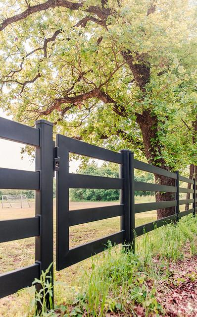 Gate Under Tree
