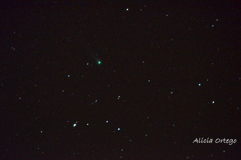 Cometa Lovejoy, 1 diciembre 6.40 a.m. 2013