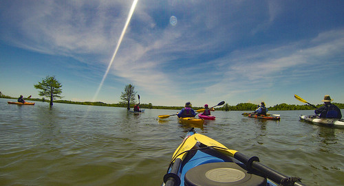 Paddle to Church Island with the Tri-County Blueways Paddlers-094