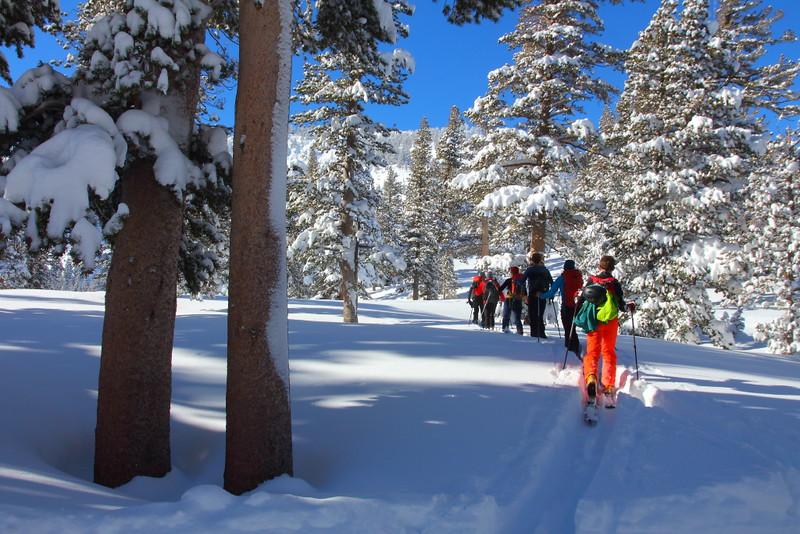 IMG_9490 Cross Country Skiing