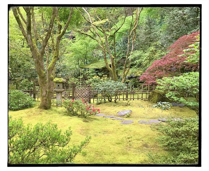 Tea house garden gate.