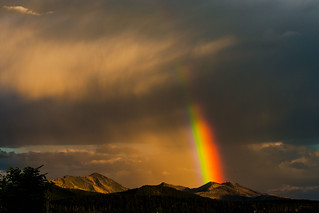 Rainbow wow | by souldad - Rob Kunz