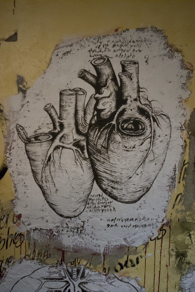 Anatomie du corps humain selon da vinci ddc 9481 free for Interieur du corps humain image