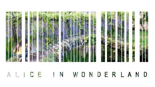 Bar Code Project: Alice in Wonderland