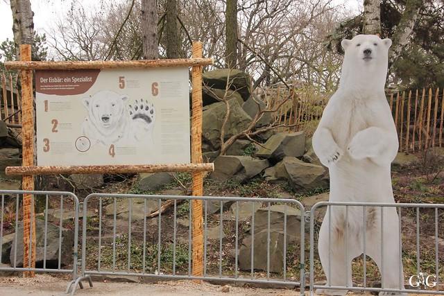 Tierpark Friedrichsfelde 19.03.20173