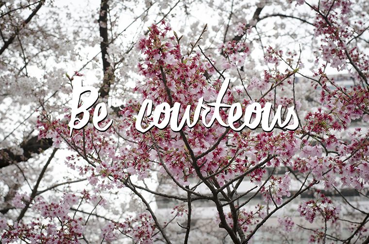 Wisdom #29 Be Courteous