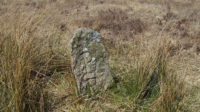 Boundary Stone on Langcombe Hill