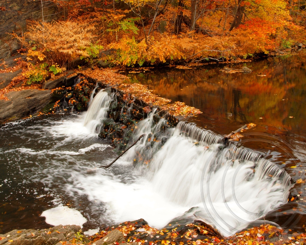 Snuff Mill Waterfall on the Bronx River, New York Botanica… | Flickr