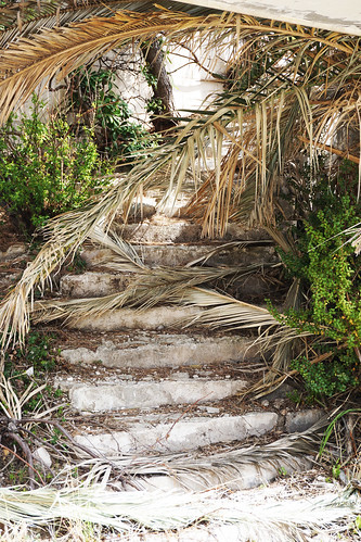 staircase reclaimed