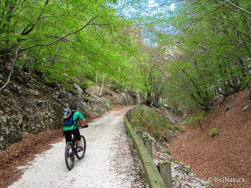Serra Alta