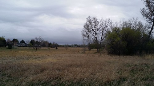 #tommw 48F overcast. Breezy