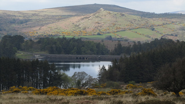 Venford Reservoir and Sharp Tor (Yartor Down)
