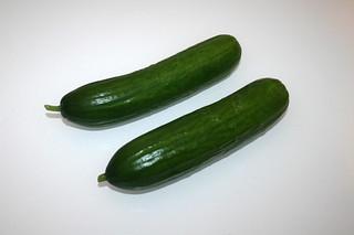 24 - Zutat Salatgurken / Ingredient cucumber