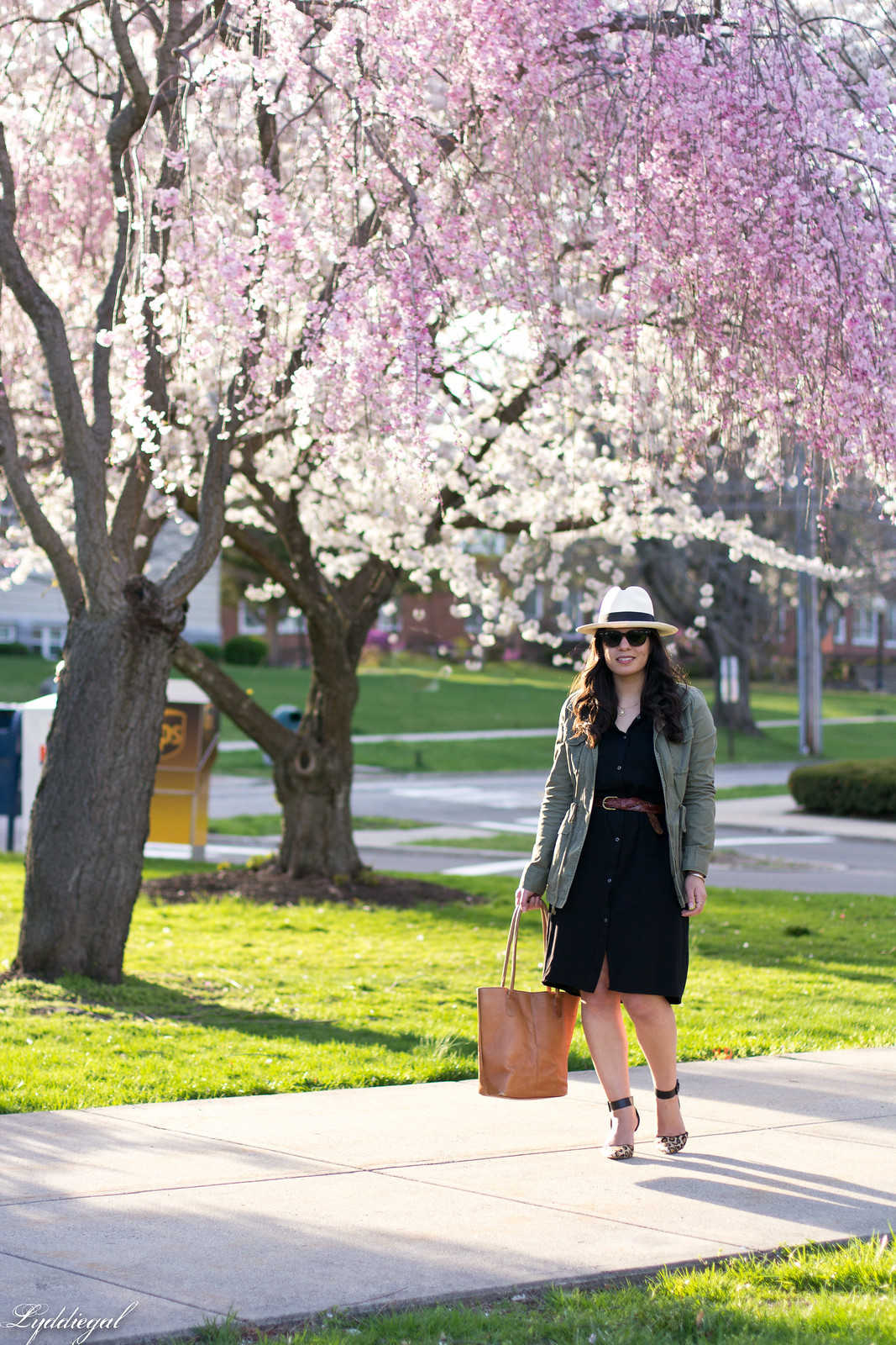 black shirt dress, field jacket, panama hat, leopard pumps.jpg