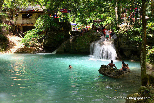 halfwhiteboy - kawasan falls, badian, cebu 17