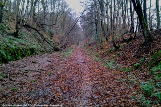 Rishworth Branch Line Trackbed 1.