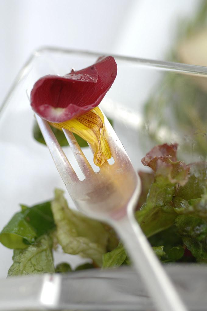 La cuisine photographe herv hote office de tourisme d 39 arles flickr - Office de tourisme d ales ...