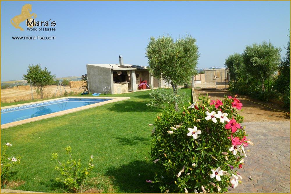 Villa Haus Chalet Pool Arcos De La Frontera Andalusien Flickr