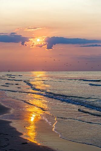 Terramar Beach Galveston Tx Rentals