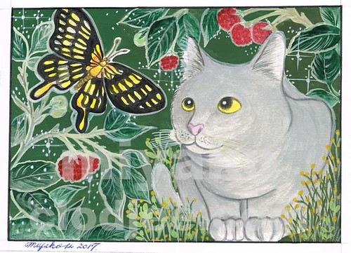 Grey cat with butterfly in a strawberry field (forever!)