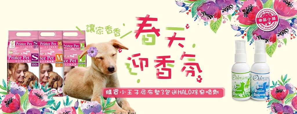 小王子3包送HALO