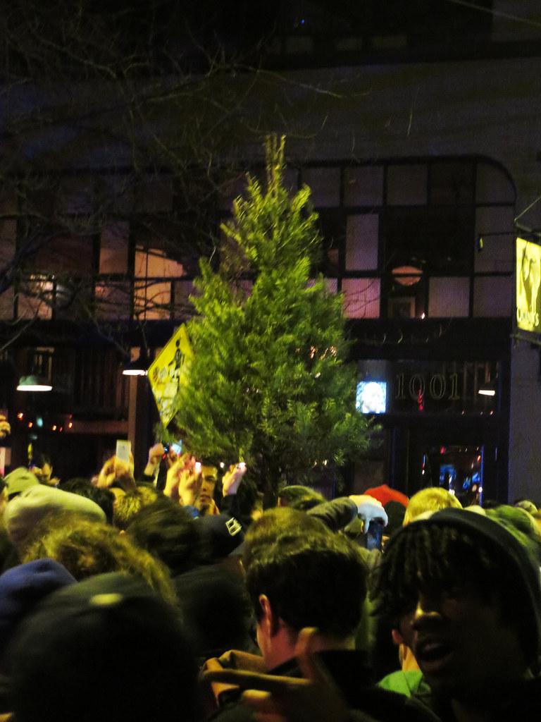 Seahawks Christmas Tree.Celebratory Seahawks Christmas Tree Where Did It Come