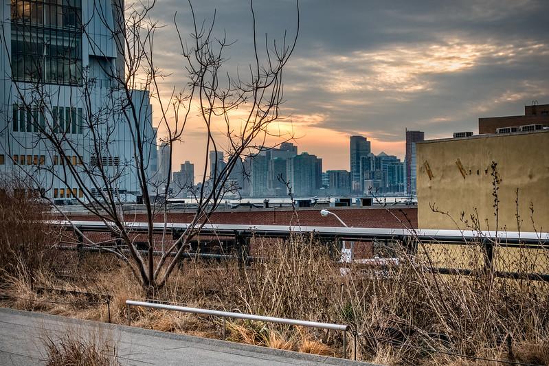 Web High Line 3