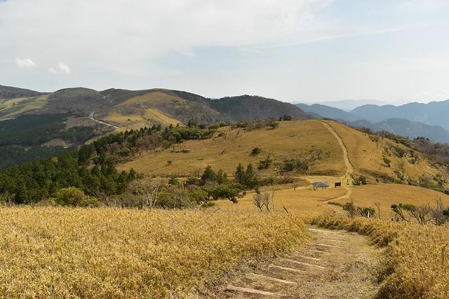 笹原広がる伊豆山稜線歩道