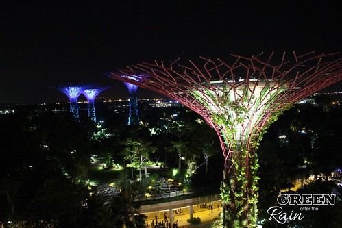 160910f OCBC Skywalk Gardens by the Bay _050