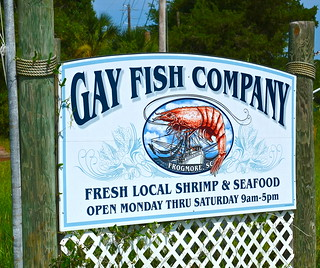 gay fish company