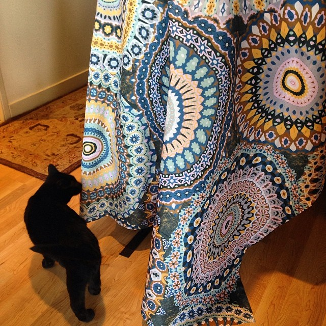 kitty checking out my new #society6 #shower #curtain with… | flickr