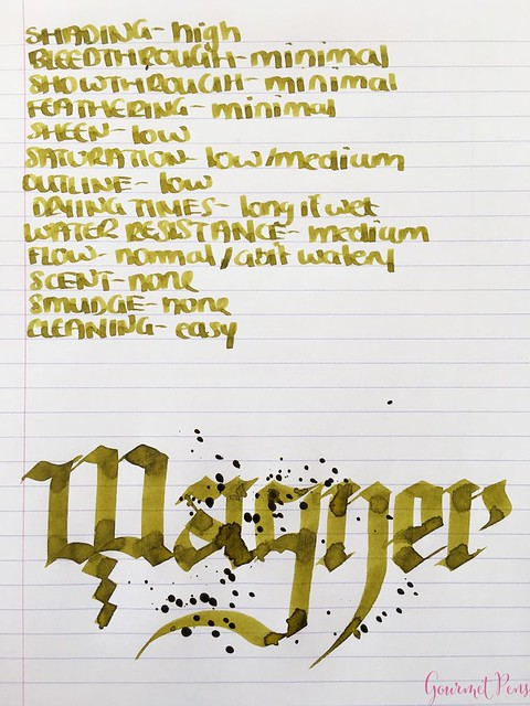 Ink Shot Review Diamine Music Wagner @AppelboomLaren 5
