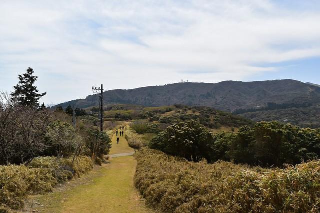 金冠山から達磨山へ