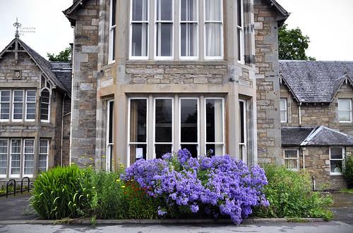 Pitlochry viola oltre la finestra pitlochry atholl - La finestra viola ...