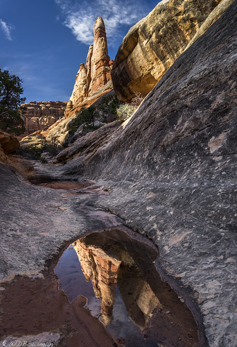 Canyon mirror | by Bill Bowman