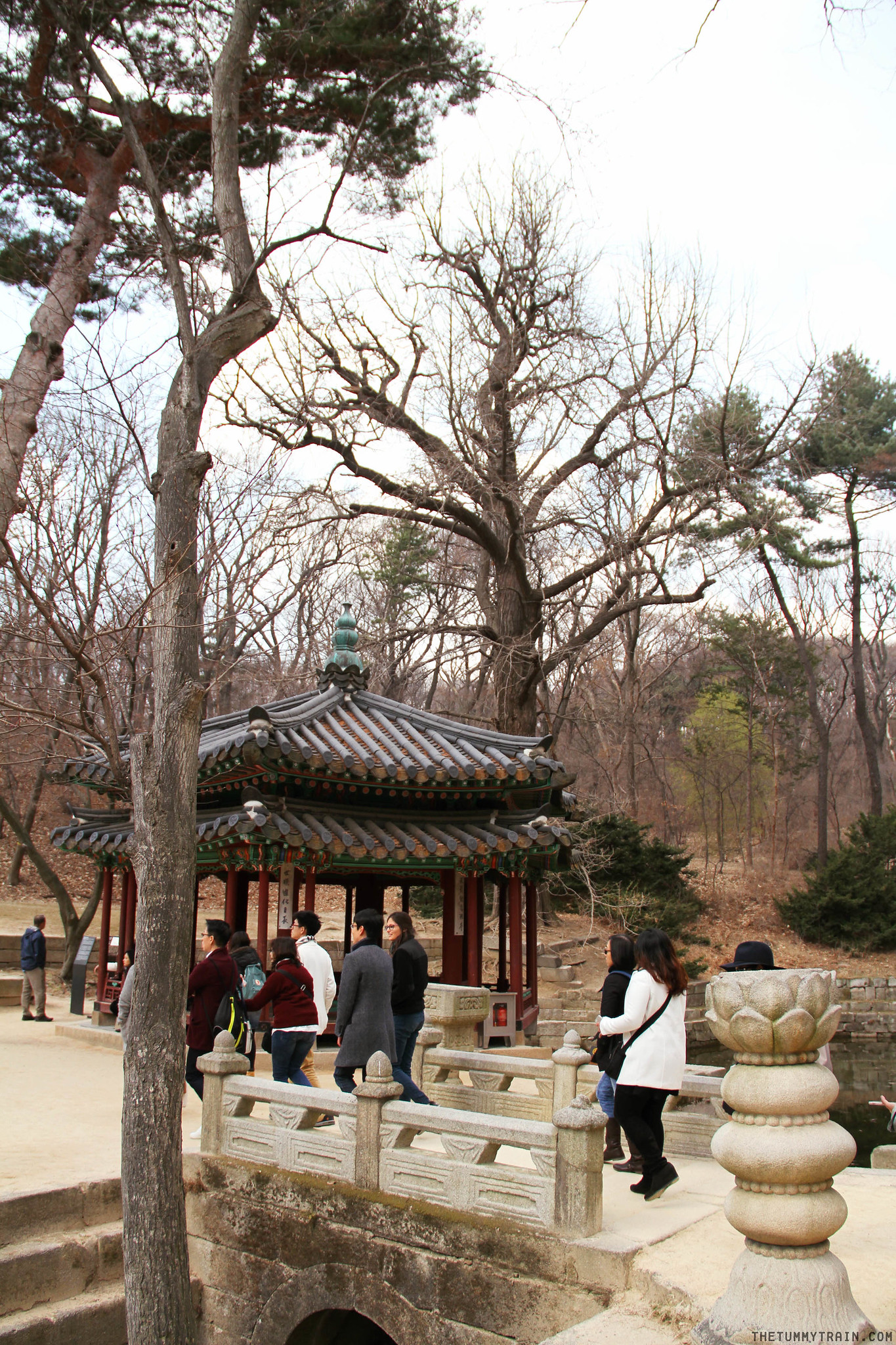 33401719101 e1aee79e1f k - Seoul-ful Spring 2016: Greeting the first blooms at Changdeokgung Palace