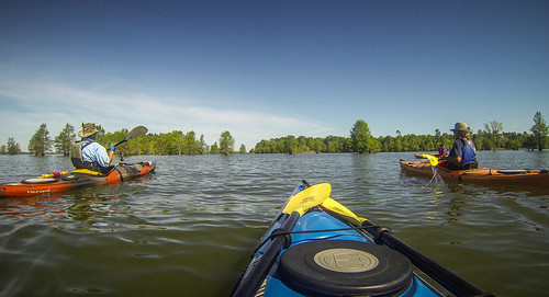 Paddle to Church Island with the Tri-County Blueways Paddlers-057