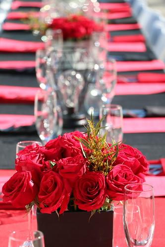Centrepiece of Roses (SOTC 232/365)