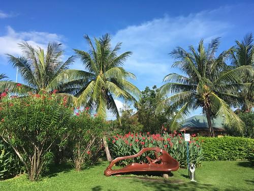 今日のサムイ島 4月8日 青空戻りました!