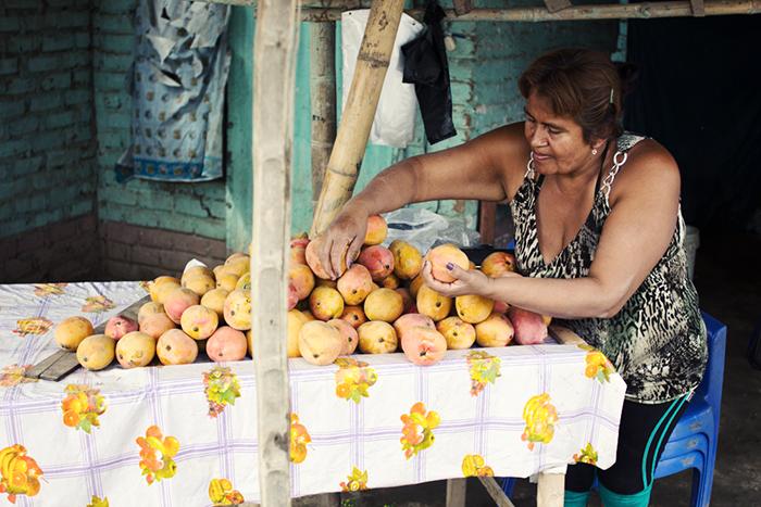 mango (1 of 7)