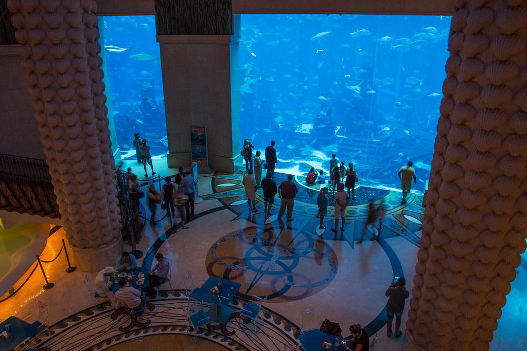 Atlantis The Palm Dubai Aquarium