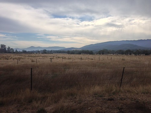 View across the Yarra Valley from the bike path