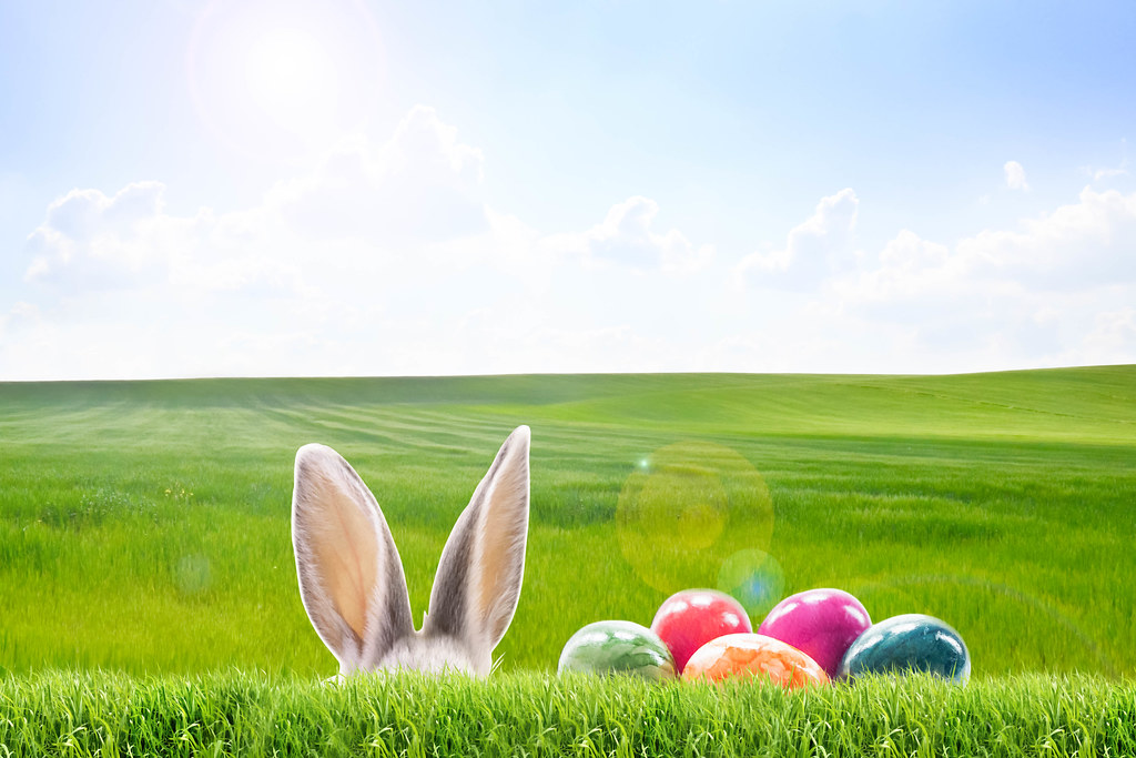 frohe ostern! - 1024×683