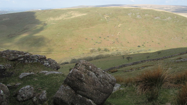 Piles Copse from Sharp Tor (Ugborough)