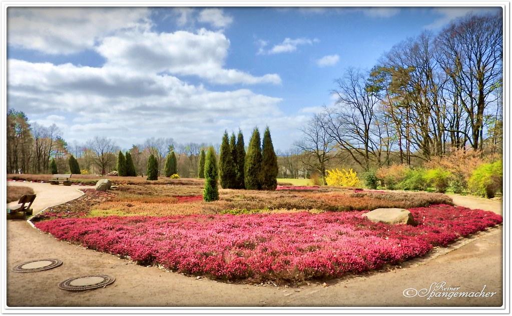 heidegarten im fr hling im april bl ht nat rlich nur die w flickr. Black Bedroom Furniture Sets. Home Design Ideas