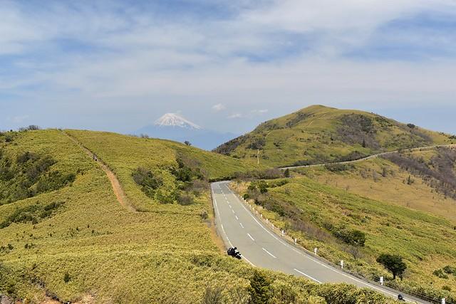 伊豆山稜線歩道 達磨山と富士山