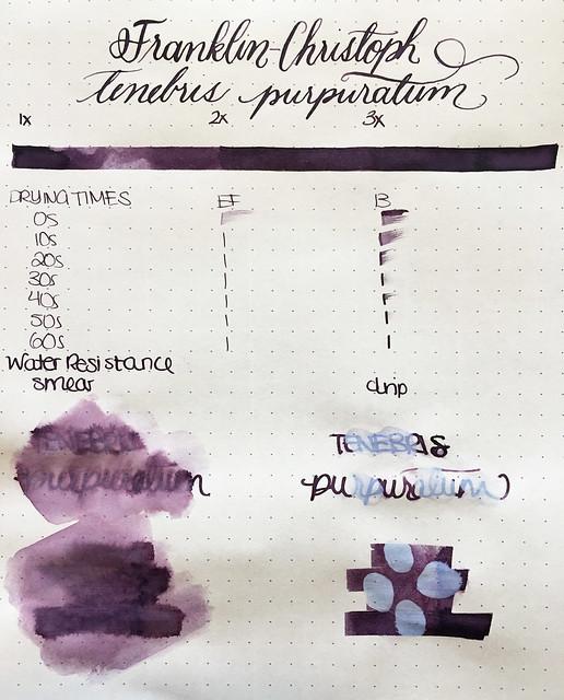 Ink Shot Review Franklin-Christoph Tenebris Purpuratum @1901FC 3