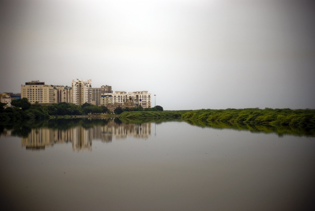 mrc nagar whale island and the adayar river chennai flickr