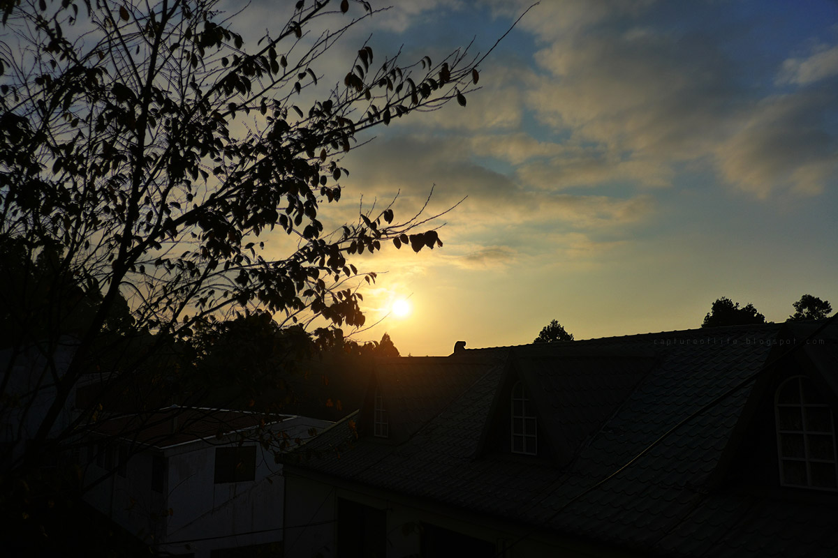 阿里山日落